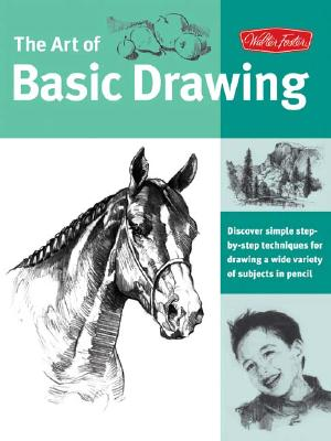 The Art of Basic Drawing By Foster, Walter